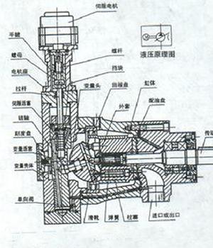 柱塞泵的工作原理